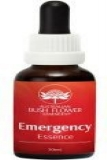 AUB Emergency Essence