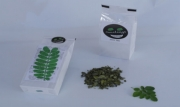Moringa Pure Tea
